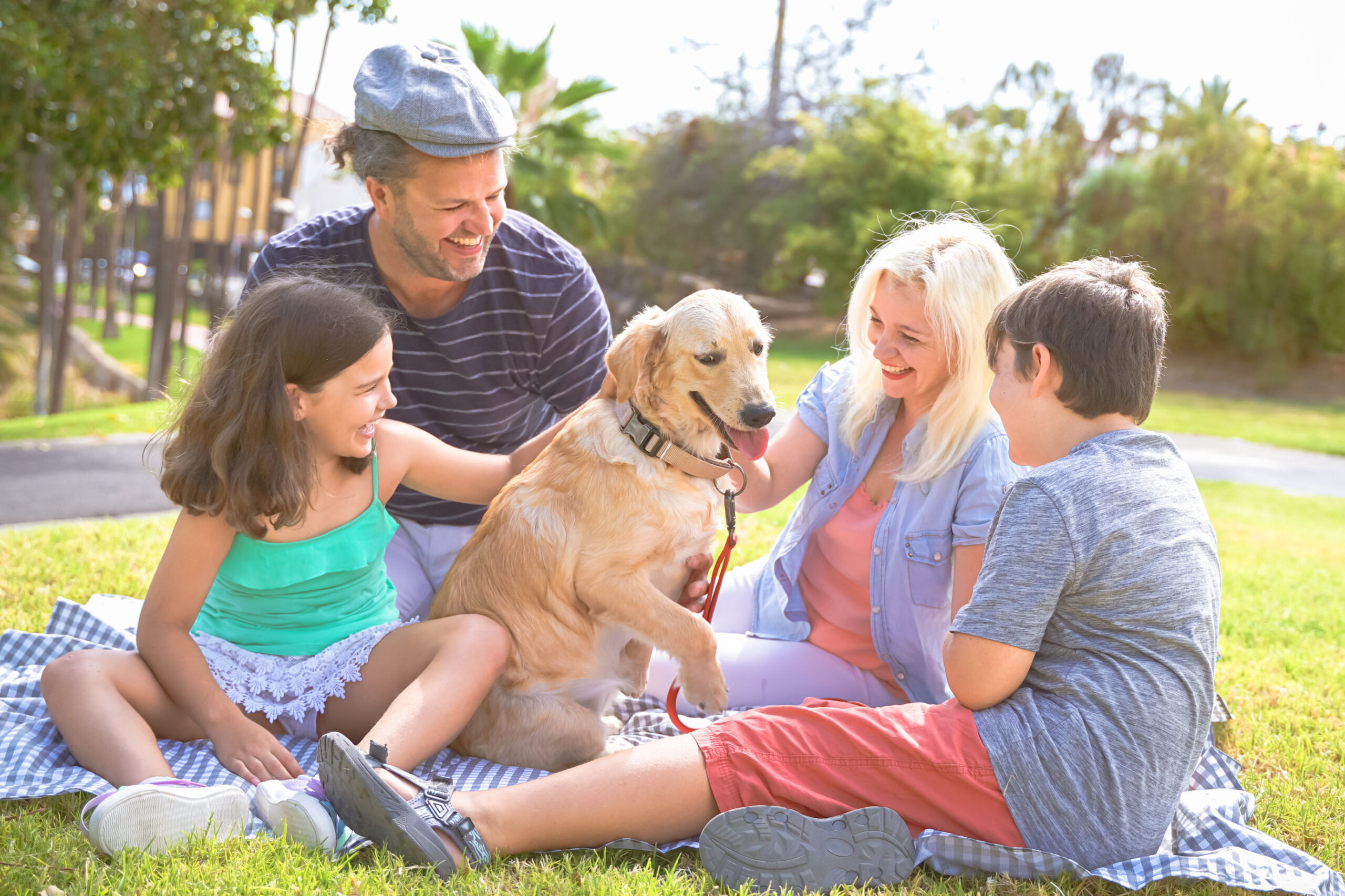 Family playing with the dog. beautiful day in the park. Happy family doing picnic in the nature outdoor. Focus the dog - Image